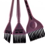 Pravana Balayage Brushes Kit